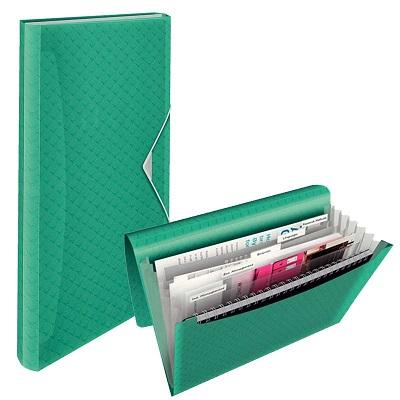 452af986fa50 Папка - картотека 6 отделений ESSELTE Colour'Ice, цена — купить в ...
